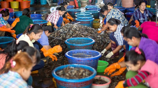 thaifishing
